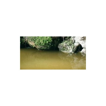 Still Water (Water) (200 ml)